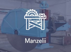 Manzelii